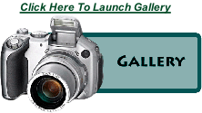 Click Here To Launch Gallery
